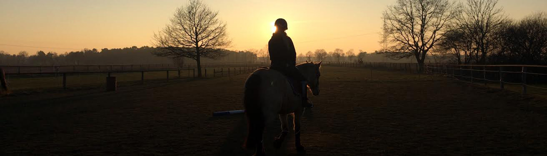 Reittherapie & Natural Horsemanship